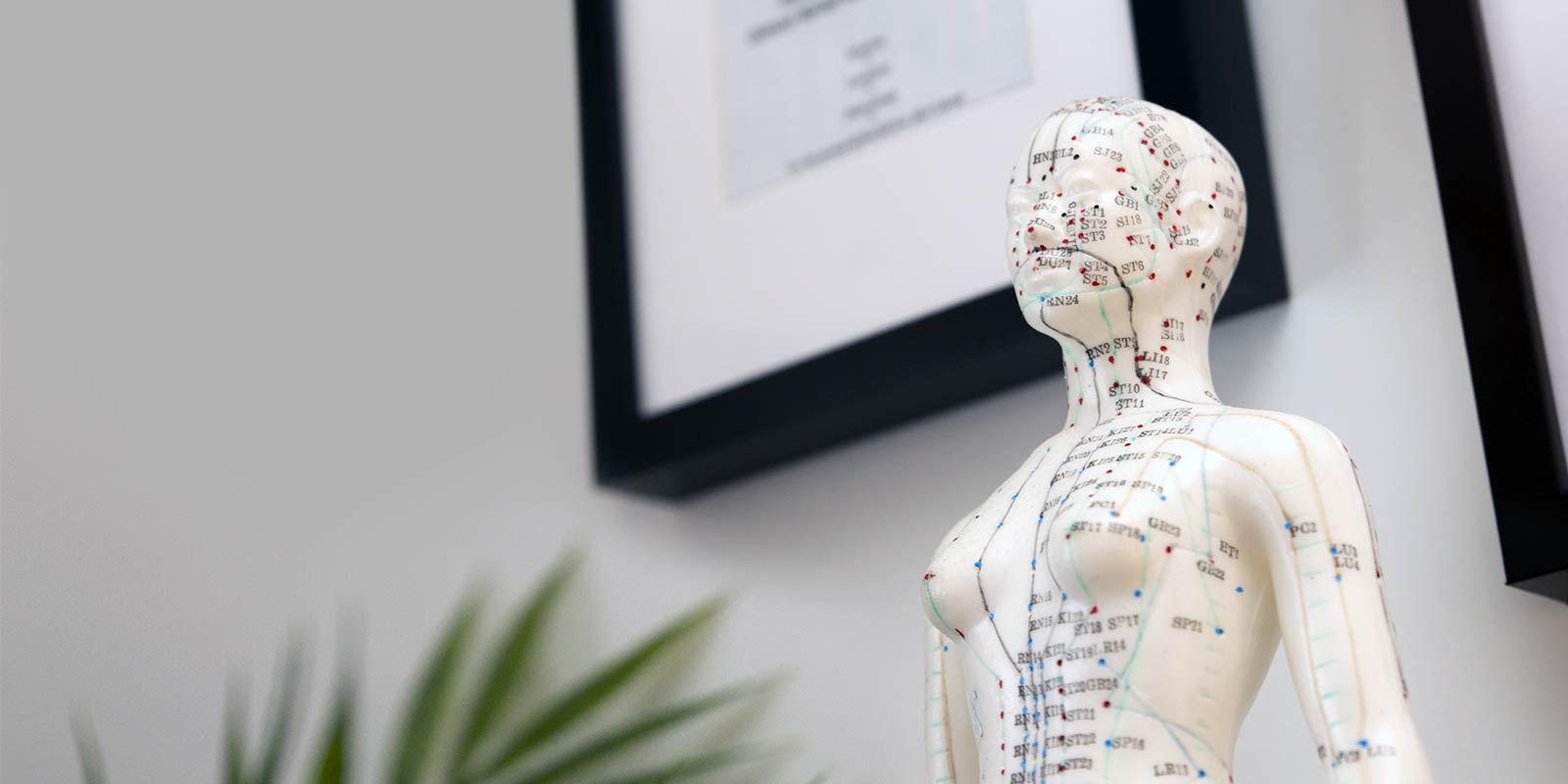 Sellick Acupuncture and Traditional Chinese Medicine